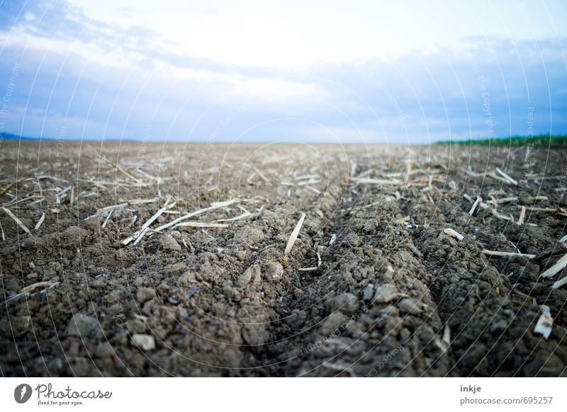 freshly ploughed Work and employment Field Working in the fields Agriculture Forestry Plowed Environment Landscape Elements Earth Air Sky Clouds Horizon Spring