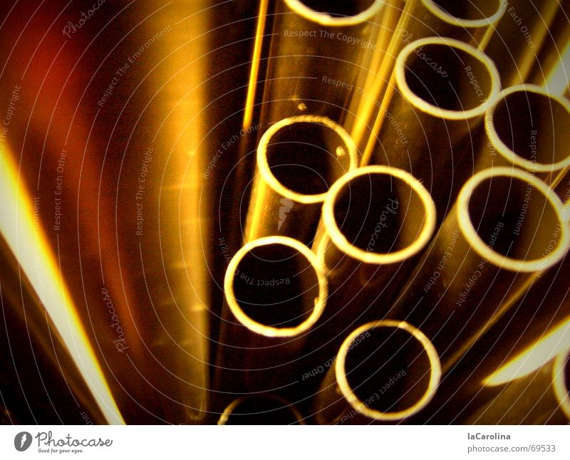 Brown Dance Gold Crazy Circle Iron-pipe Blade of grass Digital photography Opening