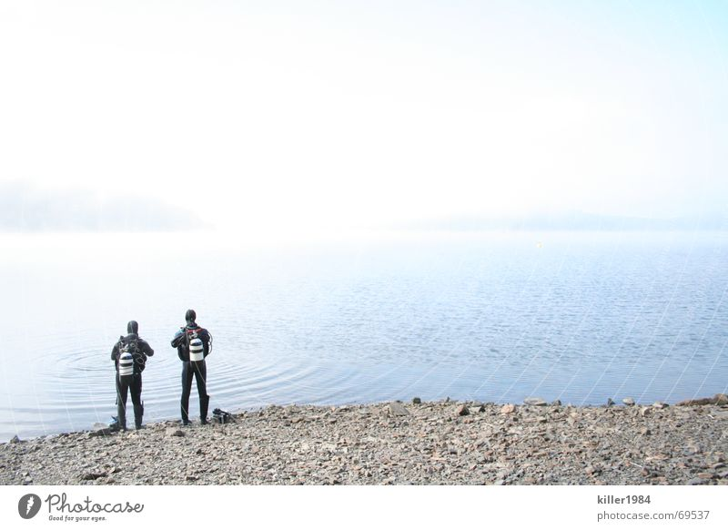 Alone at the wide lake Lake Diver Lake Eder Fog Diving equipment Friendship Wet Cold Morning Clouds Freedom Landscape Water Fluid Sky