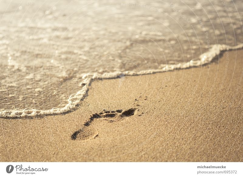 Beach footprint Harmonious Calm Vacation & Travel Freedom Summer Ocean Nature Sand Water Footprint Bright Yellow Gold Moody Living thing cheerful colourfulness
