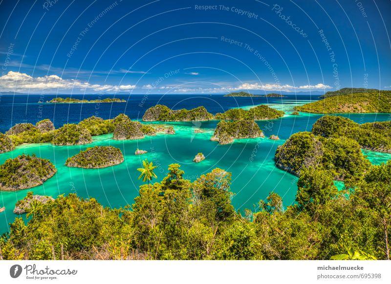 Fam Islands, Raja Ampat, Indonesia Vacation & Travel Tourism Trip Far-off places Ocean Environment Nature Landscape Plant Water Horizon Beautiful weather Bay