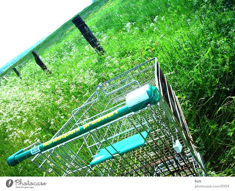 health food store Shopping Trolley Grass Mountain Contrast