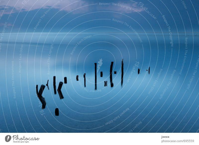 Sky Blue Beautiful Water Calm Clouds Black Cold Lake Horizon Fog Idyll Beautiful weather Wooden stake