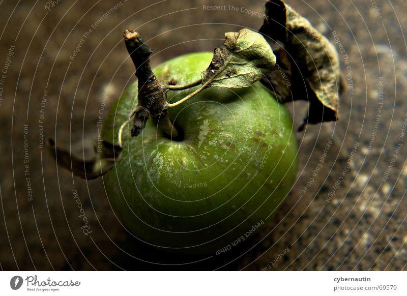 Green Leaf Autumn Stone Brown Fruit Apple Stalk Dappled