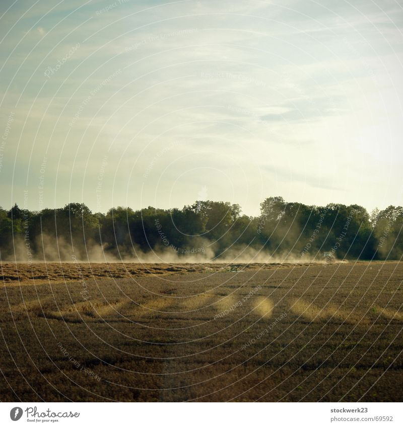 running Forest Agriculture Tractor Cloud of dust Culture Innovative Wanderlust Summer Sunbeam Field Sky Earth reflections Technology Tractor track