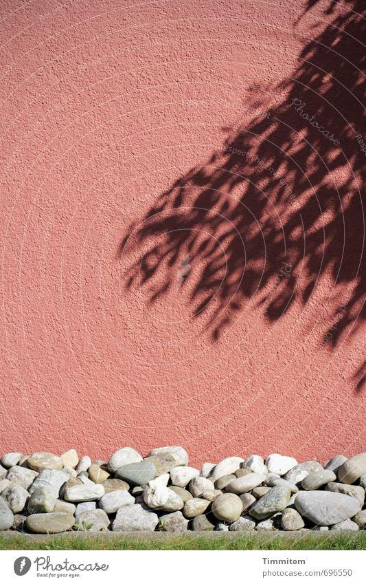Colour Calm Leaf Black Wall (building) Emotions Stone Esthetic Simple Pebble Pedestal