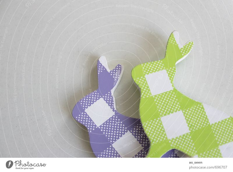 Green White Colour Animal Movement Spring Playing Gray Wood Garden Weather Living or residing Design Modern Decoration Happiness