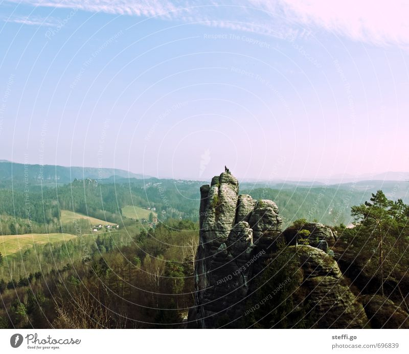 Postcard motif II Vacation & Travel Trip Adventure Far-off places Freedom Climbing Mountaineering Nature Landscape Forest Hill Rock Elbsandstone mountains