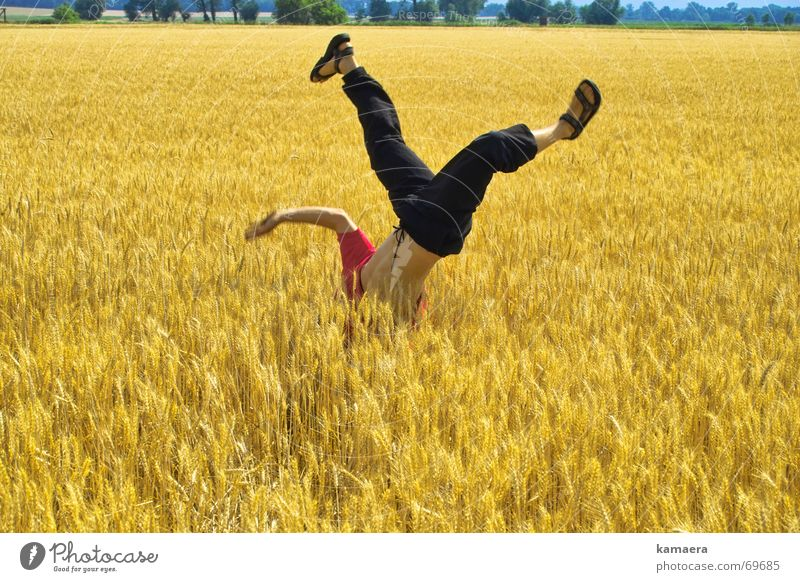Life Field Speed Athletic Joie de vivre (Vitality) Grain Cornfield Flexible Breakdance Handstand Dancer