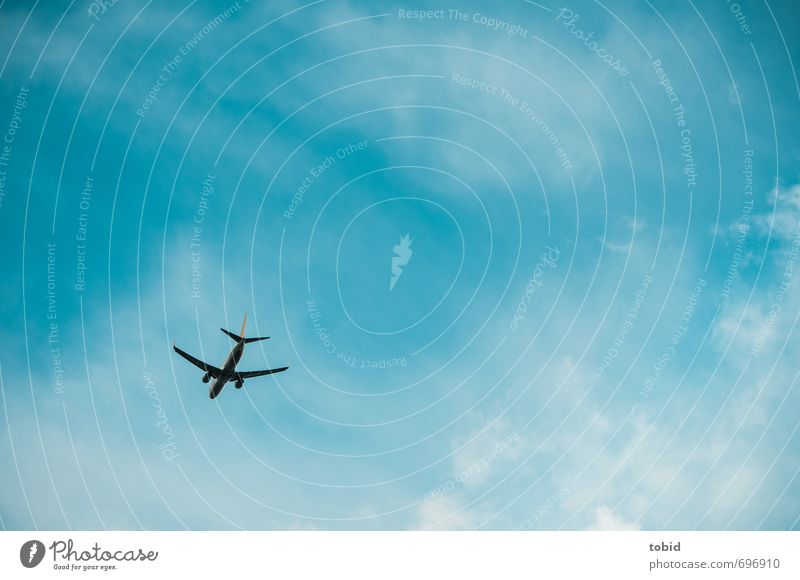 Far far away ... Vacation & Travel Tourism Freedom Summer Aviation Air Sky Clouds Transport Means of transport Airplane Passenger plane Infinity Blue Speed