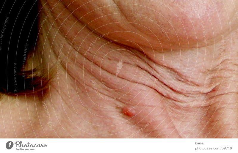 Old Adults Skin Future Wrinkles Curl Ice axe Arteria carotis communis