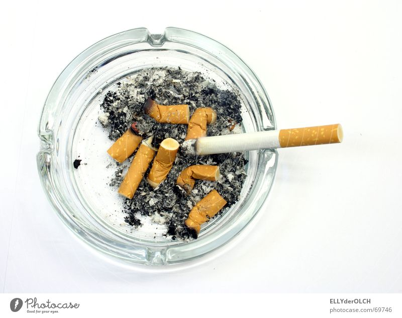 Glass Smoking Burn Cigarette Odor Tar Unhealthy Object photography Ashes Ashtray Nicotine Malodorous Cigarette Butt Filter-tipped cigarette Pulmonary disease