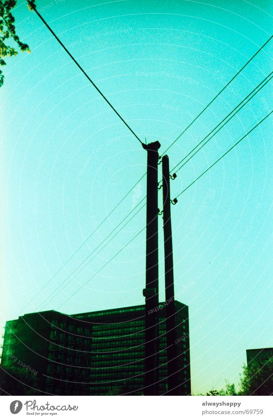 It's gonna be in the ghetto tonight. High-rise Concrete Cross processing Holga Cyan Tree Tower block Ghetto Distress Expectation Dream Outbreak Escape Problem