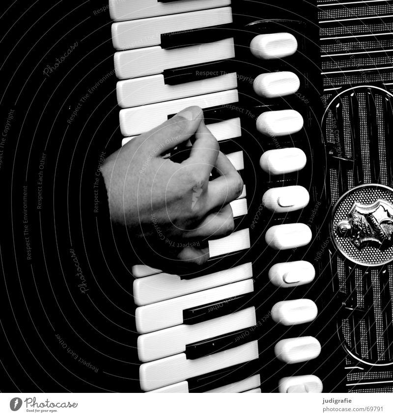 Music 4 Accordion Sound Rhythm Hand Black Musical instrument Contrast hand harmonica hand pull instrument goat organ hand organ