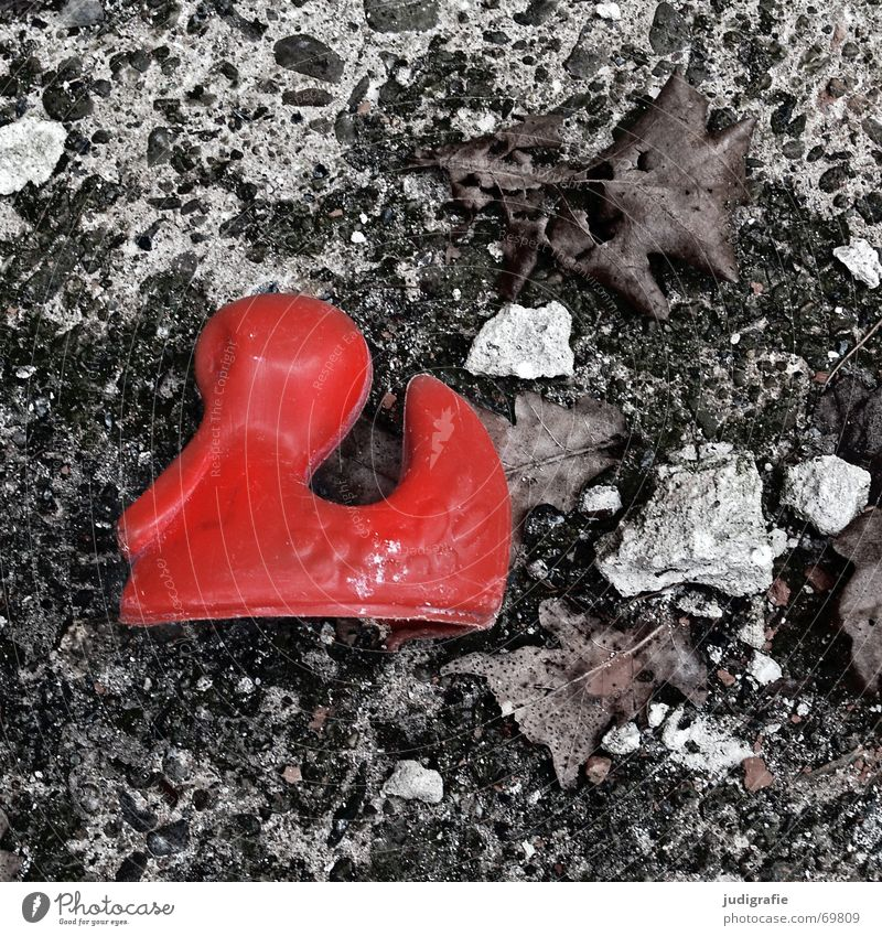 Lost Doomed Forget Toys Red Broken Concrete Leaf Grief Longing Cold Duck Floor covering Sadness Loneliness Stone Fear
