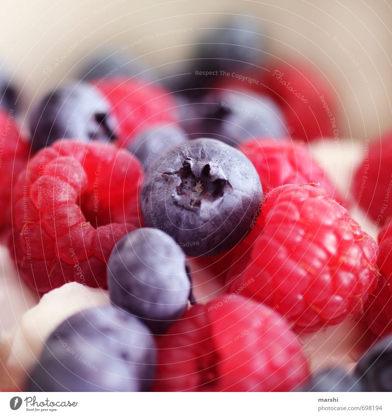 vitamins Food Fruit Nutrition Moody Blueberry Raspberry Berries Delicious Appetite Vitamin Healthy Fruit salad Colour photo Interior shot Close-up Detail