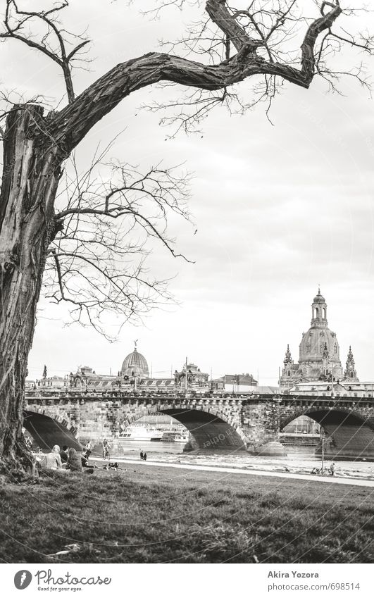 [250] Good old Dresden Sky Clouds Spring Tree Grass Meadow River bank Germany Town Capital city Old town Church Bridge Architecture Tourist Attraction