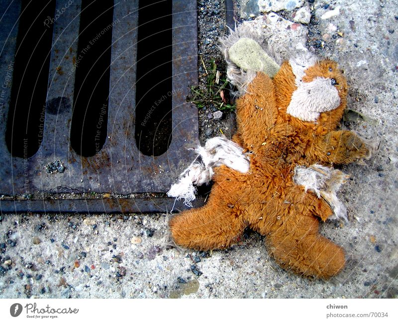 stitch Livestock Hare & Rabbit & Bunny Cuddly toy Gully Thud Plush Grief Sweet Cute Retirement pension Street run sb./sth. over Death Truck bam whum blasted