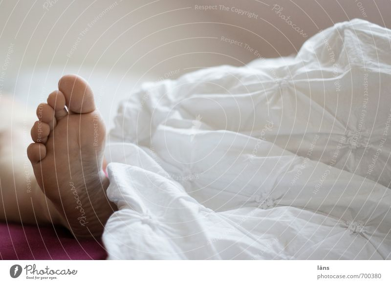 White Feet Lie Sleep Bed Bedclothes