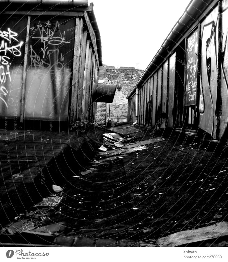 Roof top Black White House (Residential Structure) Vanishing point Wall (barrier) Leipzig Plagwitz Sky Graffiti Glass Window pane Old Rust rancid