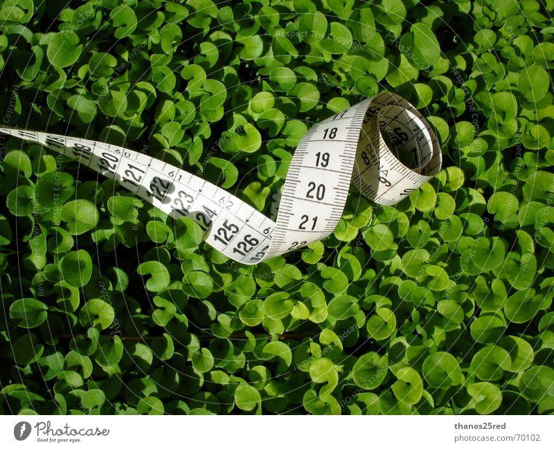 green measuring... Clever Nature Trifili measure grass mezoura xorto