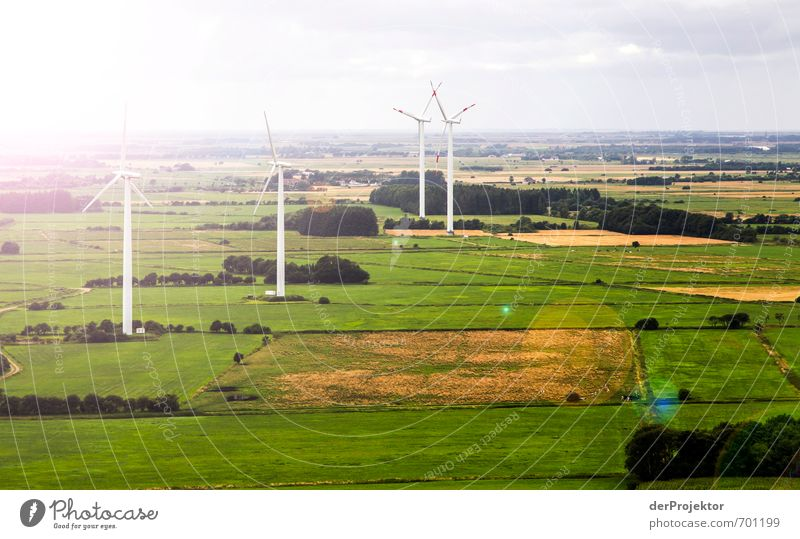 Nature Summer Tree Landscape Environment Germany Field Energy industry Large Climate Beautiful weather Future Technology Wing Infinity Wind energy plant