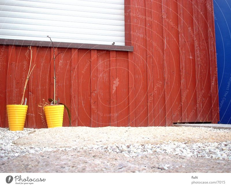 Blue Red Wood Door Facade Living or residing Flowerpot