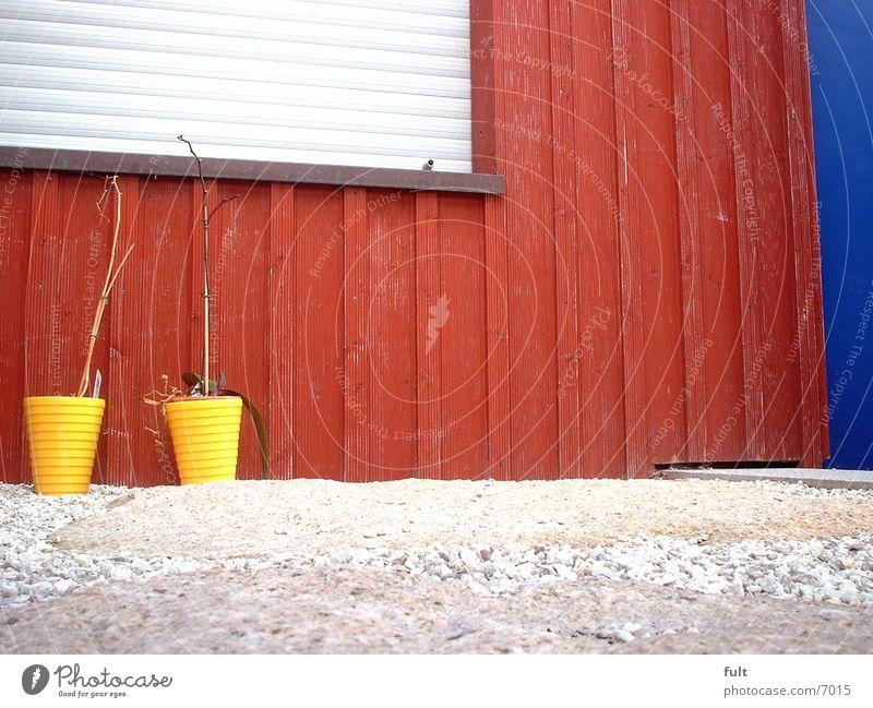 Blue Red Wood Door Facade Living or residing Flowerpot