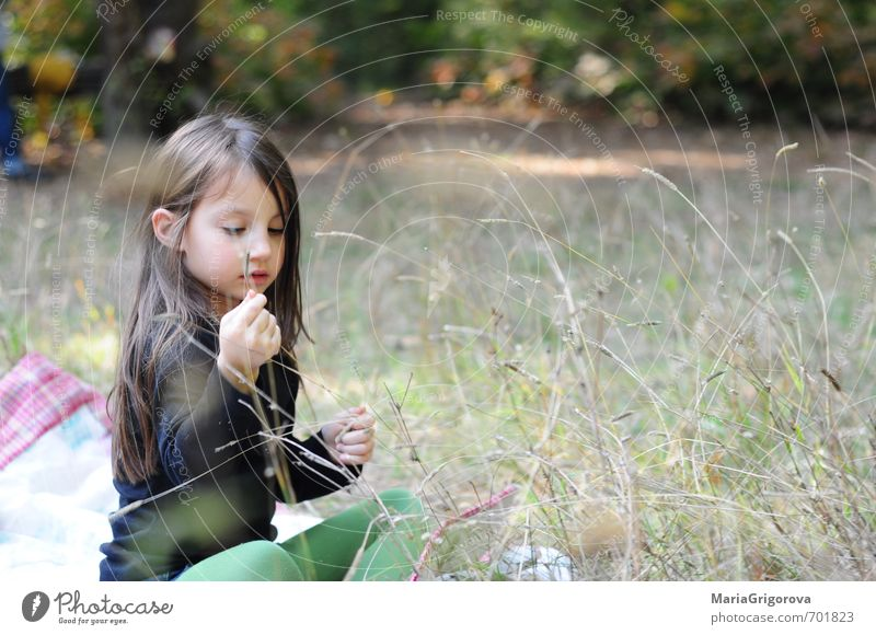 Happy autumn day Human being Child Beautiful Green White Joy Black Yellow Playing Small Natural Brown Pink Orange Body Gold