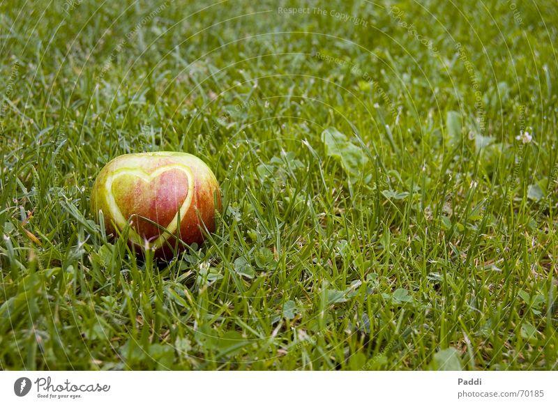 heart apple Grass Emotions Meadow Apple skin Heart Love