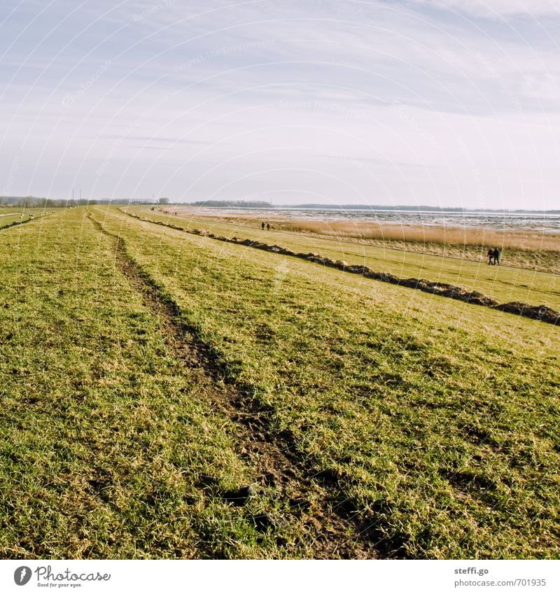 dike walk Hiking Human being Nature Landscape Grass Meadow Hill North Sea Baltic Sea Observe Relaxation Going Far-off places Infinity Serene Calm Contentment