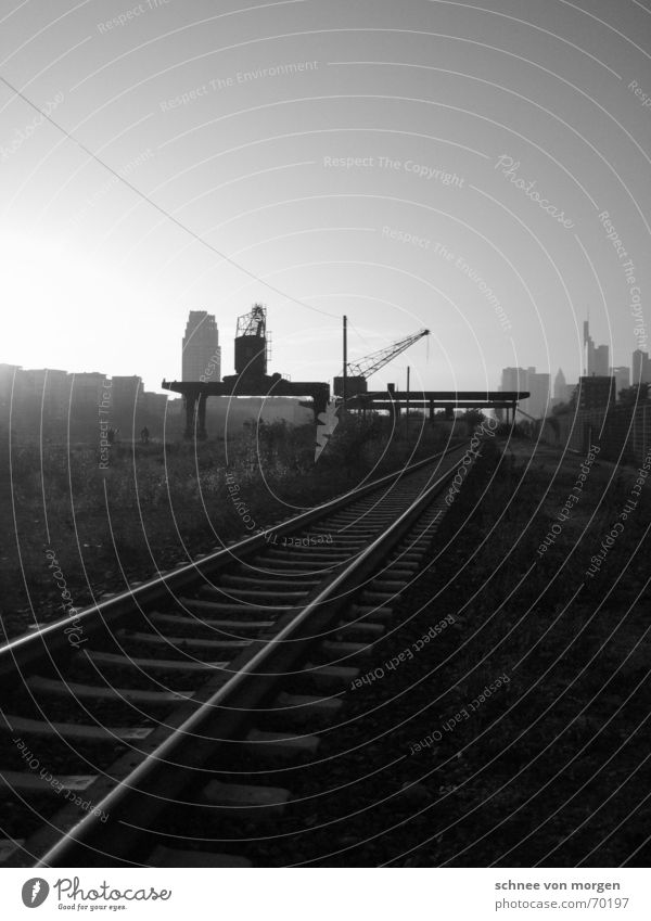 Go west Frankfurt Town Traffic lane Railroad tracks Crane Sunset High-rise Main Transport Moody Dark Light Outskirts Watercraft Sky Back-light Industry