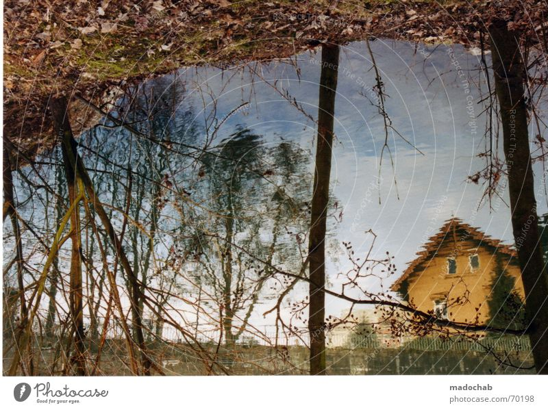 Water Beautiful Tree Summer House (Residential Structure) River Romance Kitsch Village Idyll Brook Reflection Harmonious Home country Enchanting To console