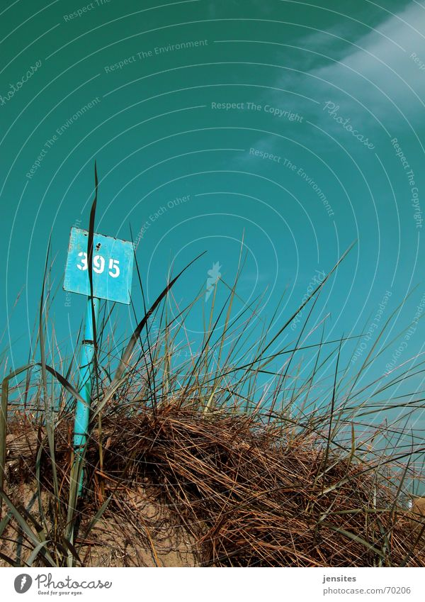 just a little heat Ocean Grass Plant Digits and numbers Calm Summer Physics Hot Clouds Sky Blue sky Beach dune Signs and labeling Nature Sand blue sign 395 Rust