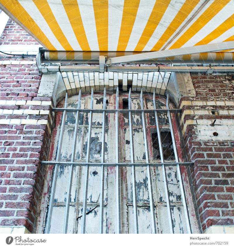 cocooning Antwerp Belgium Town Old town House (Residential Structure) Manmade structures Building Wall (barrier) Wall (building) Facade Window