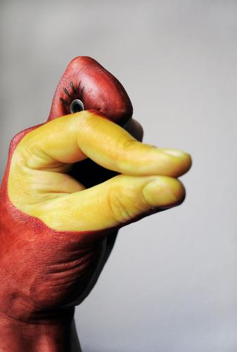 Hand Duck Animal Joy Idea Inspiration Art Painted Eyes Creativity Painting (action, artwork) Beak Fingers Comic Comic strip character Bird Funny Arm