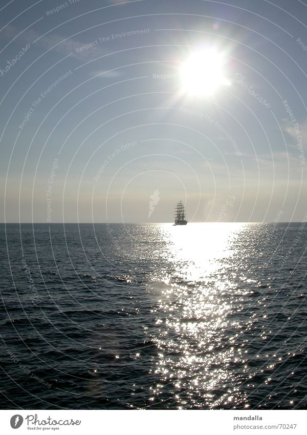 Nature Sun Ocean Summer Calm Far-off places Dream Warmth Watercraft Waves Horizon Infinity Longing Sailing Silver Harmonious