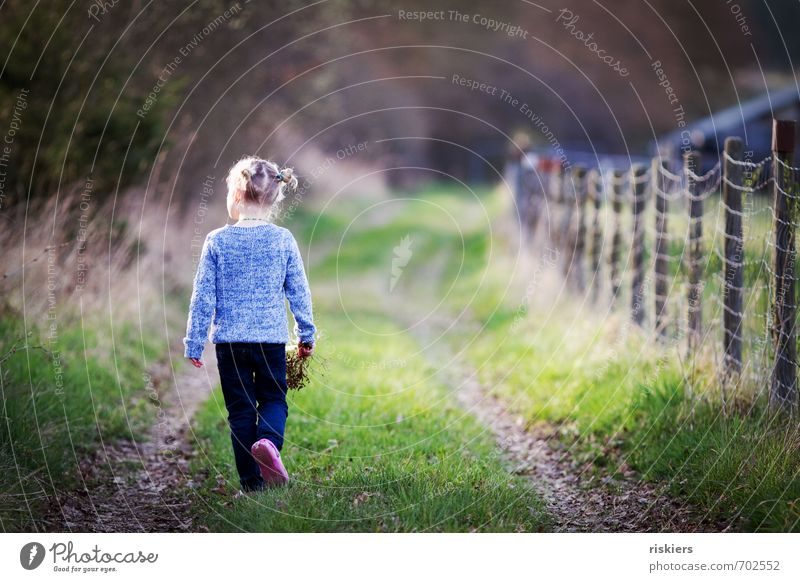 Human being Child Nature Blue Green Relaxation Girl Forest Environment Life Meadow Feminine Autumn Spring Natural Going