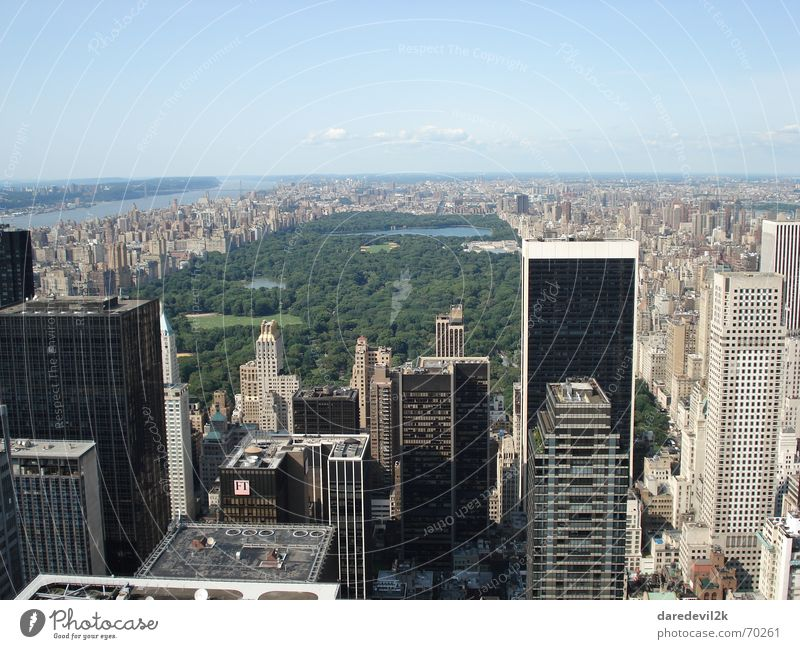 central park Park Green New York City Town High-rise House (Residential Structure) Americas Sky