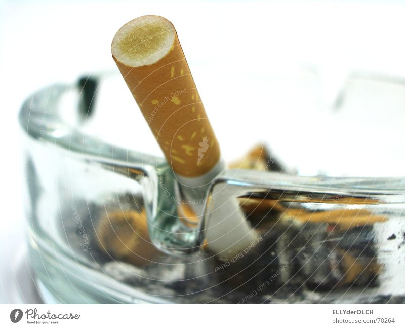 Glass Smoking Cigarette Odor Tar Unhealthy Object photography Ashes Ashtray Nicotine Malodorous Cigarette Butt Filter-tipped cigarette Harmful to health Non-smoker protection