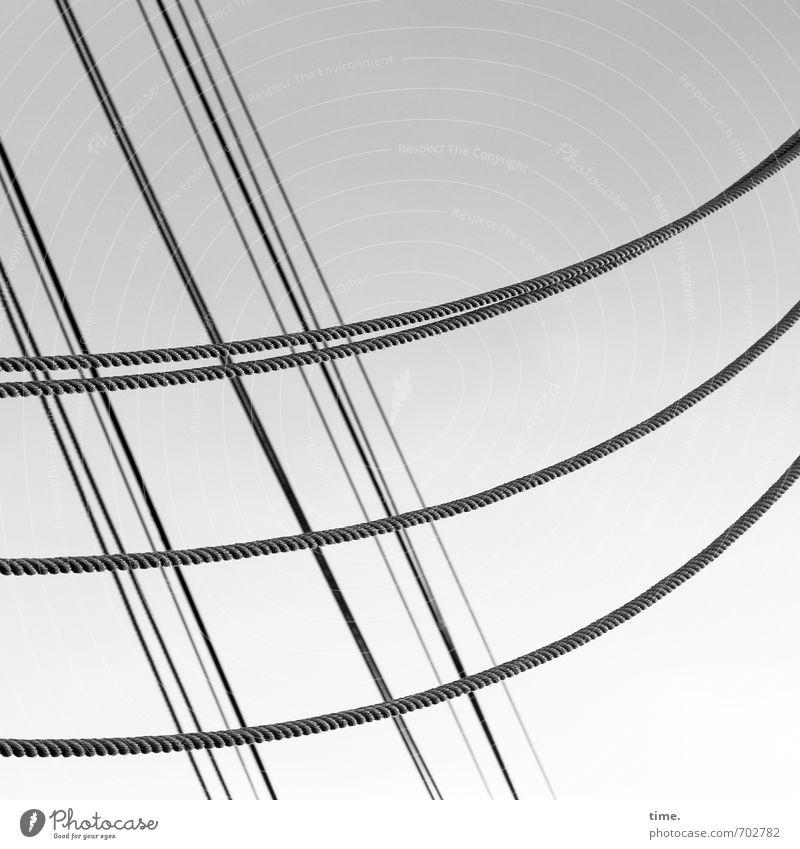 Movement Line Elegant Idyll Arrangement Tall Esthetic Rope Attachment Navigation Relationship Diagonal Inspiration Identity Flexible Precision