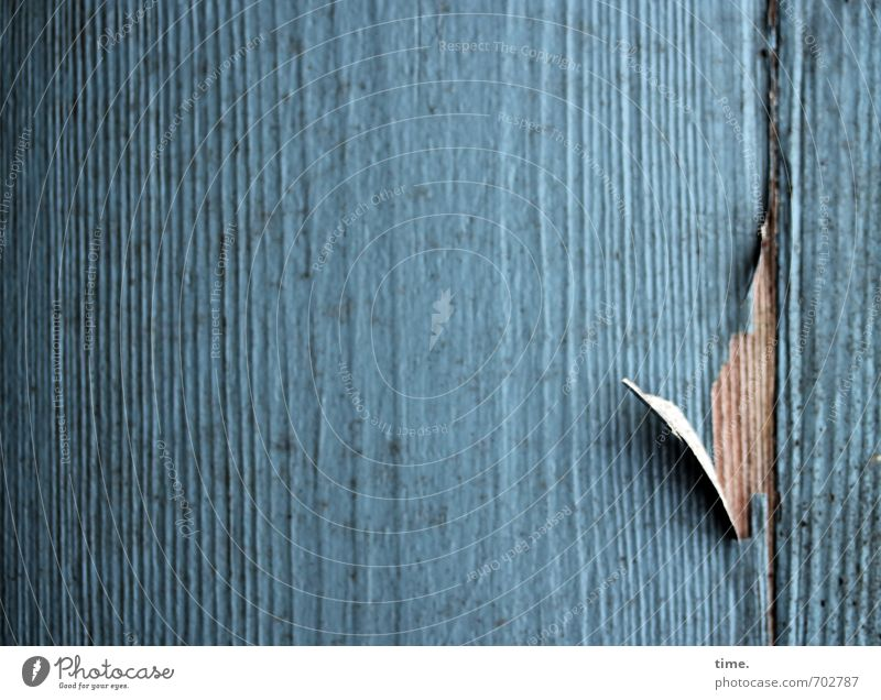 counted Gardenhouse Barn Wall (barrier) Wall (building) Facade Varnish Varnished Wood Line Old Dark Broken Trashy Blue Life Fatigue Pain Exhaustion Embitterment