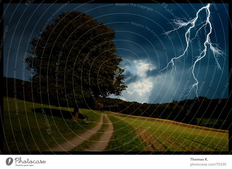 Tree Clouds Dark Meadow Lanes & trails Rain Moody Field Wind Bathroom Gale Lightning Thunder and lightning Footpath Go under Thunder