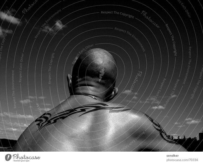 chillin´ Bald or shaved head Man Summer Think Loneliness Search Black & white photo Tattoo Skin Sky Back Far-off places Chain ponder