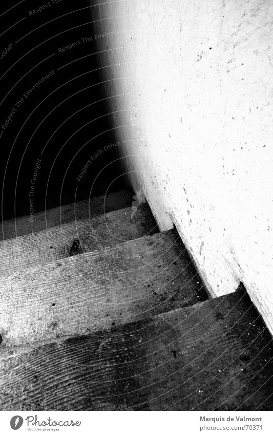 They'll come from down there... Footstep Dirty Wood Wall (building) Plaster Lime White Black Cellar Steep Downward Dark Light Mysterious Eerie Creepy Stairs