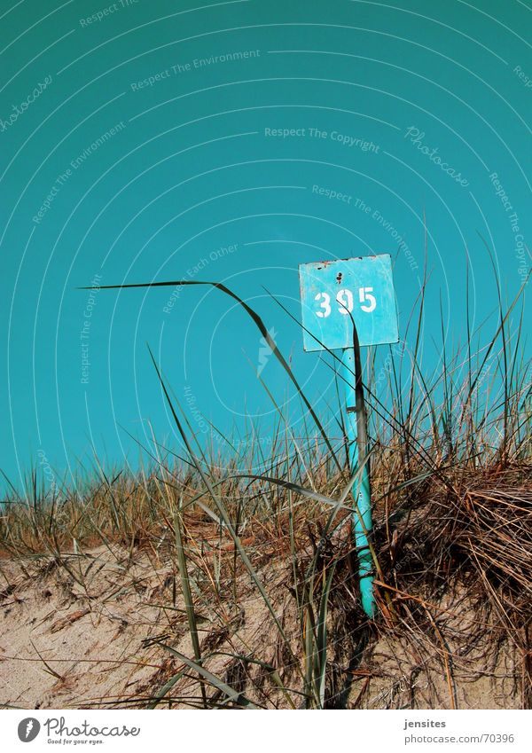 Nature Sky Blue Plant Summer Beach Calm Grass Warmth Signs and labeling Digits and numbers Physics Rust Turquoise Beach dune Blue sky