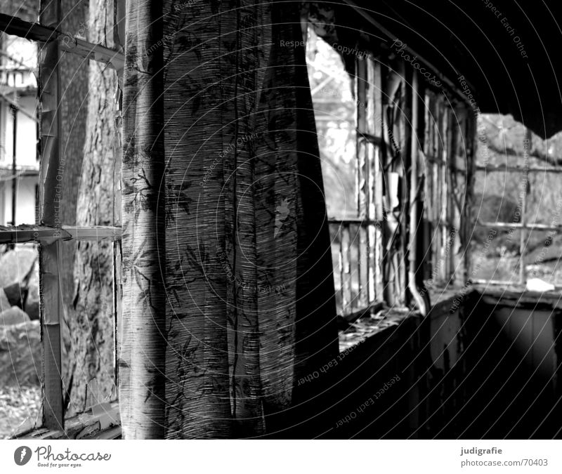 Old Vacation & Travel White Tree House (Residential Structure) Black Relaxation Window Dark Wood Building Broken Romance Derelict Creepy Shabby