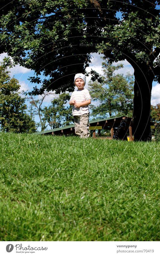 Child Sky Tree Joy Boy (child) Grass Mountain Happy Laughter Wait Masculine Happiness Hill Cap Rotate Upward