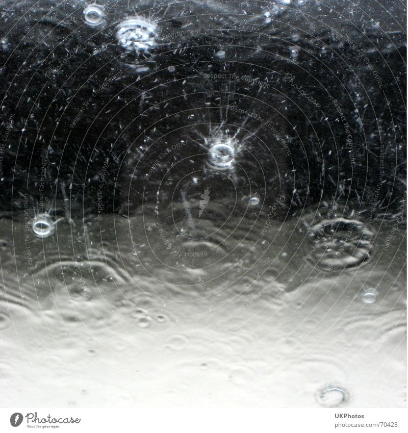 raindrop Wet Waves Background picture Rain Drops of water Weather Water Black & white photo