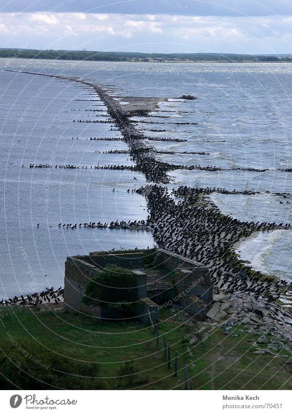 Water Ocean Vacation & Travel Freedom Waves Island Longing Ruin